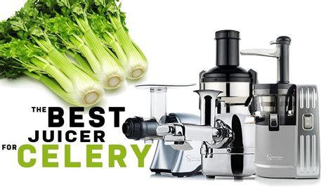 celery juicer juicers juicing vegetables fruits number
