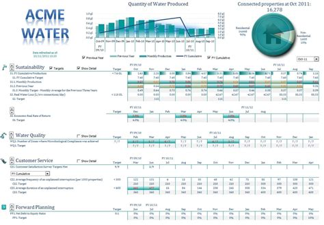 excel dashboards  reports access analytic