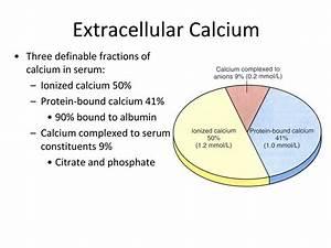 Calcium Metabolism Diagram