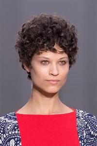 Coupe Courte Frisée Femme : fris s gris raides les cheveux en libert affichent leur ~ Melissatoandfro.com Idées de Décoration