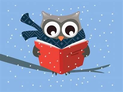 Owl Reading Fun Having Winter Read Books