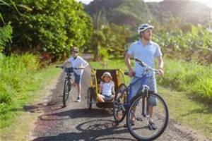 Fahrradanhänger Kinder Test : fahrradanh nger test 2017 kostenloser vergleich ~ Kayakingforconservation.com Haus und Dekorationen