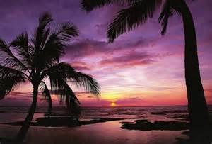 Purple Sunset Beach Hawaii