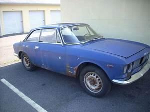 Alfa Romeo 1965 Gt Giulia Veloce 1600 Cc For Sale