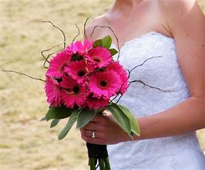Gerbera Daisy Bouquet   wedding   Pinterest