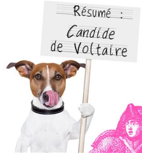 commentaire compose resume candide resume zadig chapitre 3 bestsellerbookdb