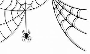 Cute spider web clipart free clipart images 4 clipartcow ...
