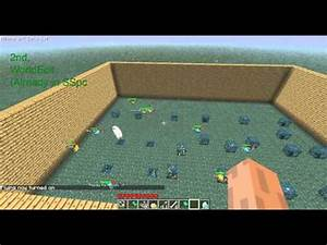 Minecraft Special Ep 01 Guinea Pig Hotels Tips YouTube