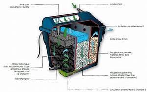 Filtration Biologique Pour Bassin A Poisson : filtraclear 8000 plusset uv c 9w elimax 2000 ubbink ~ Premium-room.com Idées de Décoration