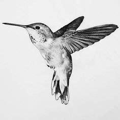 mandala bird tattoo tatouage tatouage colibri