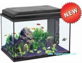 aquarium aquatlantis 300 litres 28 images aquatlantis aquarium aquariums accessories