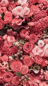 Pinterest @appellesapothecary www.appelles.com | floral ...