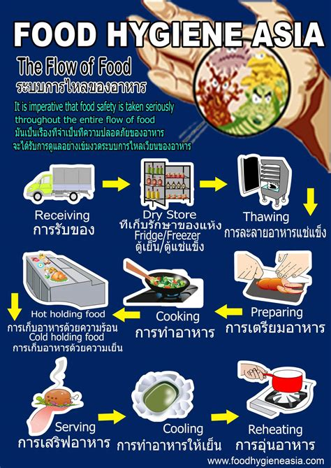 hygiene cuisine food safety posters related keywords food safety posters