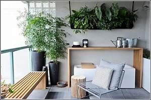 Blumen Für Den Balkon : blumen fr den balkon im sommer download page beste ~ Lizthompson.info Haus und Dekorationen