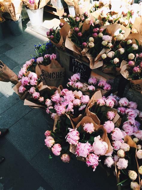 de fleurs  plantes une semaine sur pinterest