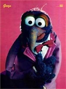 39 best images about The Great Gonzo on Pinterest | Funny ...