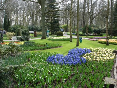 Englischer Garten Pantip by Pantip J10306428 สวนสาธารณะ Parks หร อ