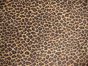 Cheetah print for my arm