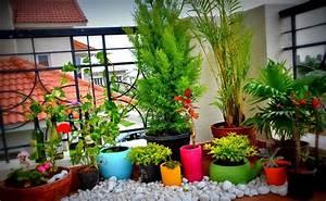home garden for small spaces backyard design ideas