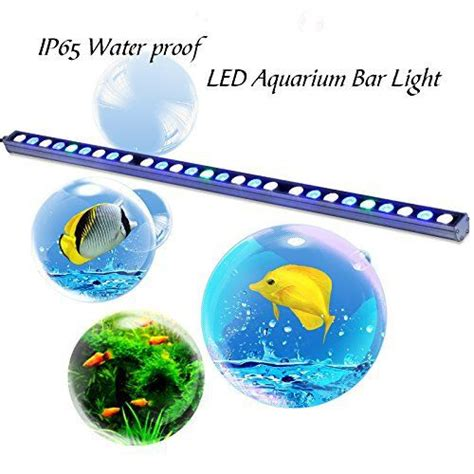 1000 ideas about aquarium lighting on pet