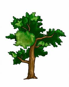 Trees Colored Drawing | www.pixshark.com - Images ...