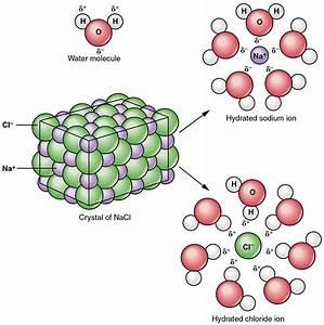 Iu South Bend Chemistry And Biochemistry  Ppt