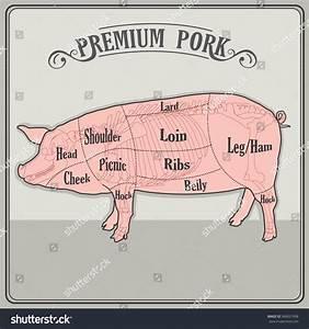 Butcher Pig Vector Illustration Butcher Pig Stock Vector