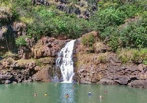Popular Waterfall Hikes In Oahu Manoa Falls Waimea