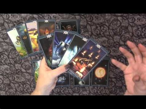 traceyhd s review of the sacred circle tarot doovi