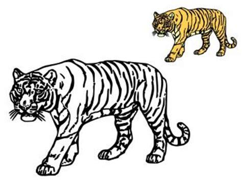 jeu gratuit de cuisine de coloriage tigre catégorie félins chiens papoozy fr