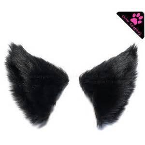 black cat ears ears polyvore
