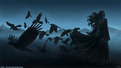 Raven Gothic Dark Bird Background Birds Horror