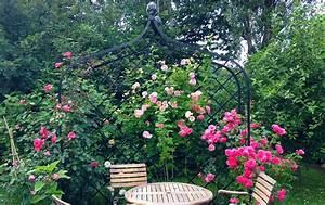 Rankhilfen Für Rosen : wahl der passenden rankhilfe tipps und tricks rund um rosen ~ A.2002-acura-tl-radio.info Haus und Dekorationen