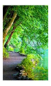 Latest 13 nature HD wallpapers - 2020 latest Update ...
