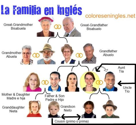 miembros de la familia ingles espanol idiomas ingles