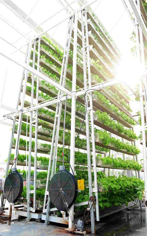 Vertical Farming vs. Farming Vertically