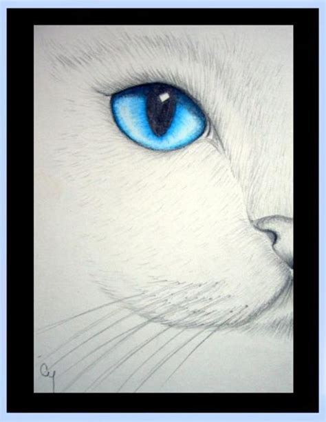 White Cat  Blue Eye  By Cyra R Cancel From Gallery