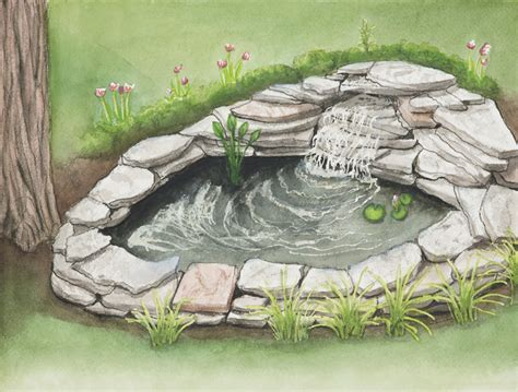 how to build a small pond in your backyard 12 steps to building a small pond for your backyard