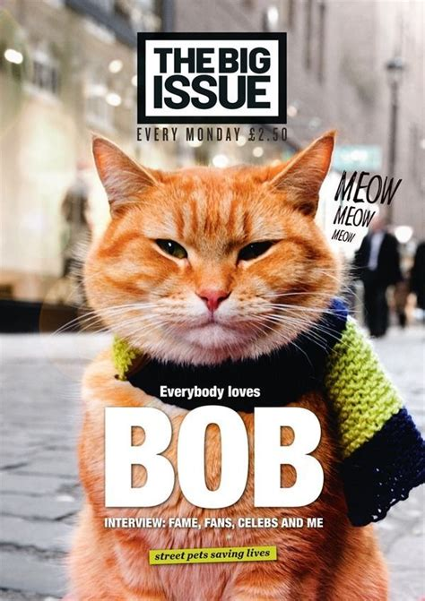 Big Issue Magazine Issue 1111 (14 July 2014) A Street Cat