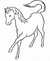 Horse Coloring Template Printable Getcolorings sketch template