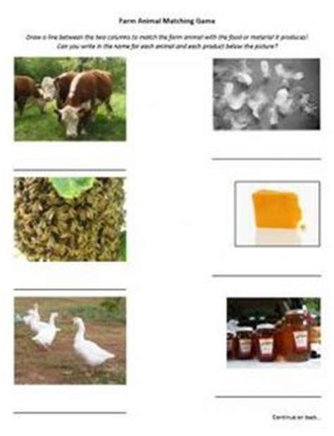 farm animals   food animals worksheet farm mini