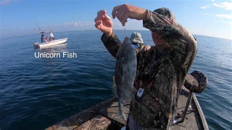 florida fishing panama shore near