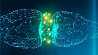 Dopamine Gaba Brain Chemical Technology Addiction Bean