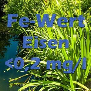 Eisenfilter Brunnenwasser Selber Bauen : der fe wert eisen im teich f r pflanzen ~ Frokenaadalensverden.com Haus und Dekorationen