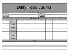 Printable Daily Food Journal