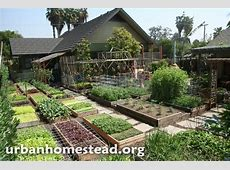 How to Grow 6,000 Lbs of Food on 110TH Acre Home Design