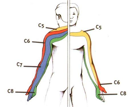 douleur cervicale droit