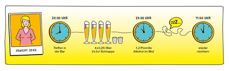 alkohol abbauen kenn dein limit