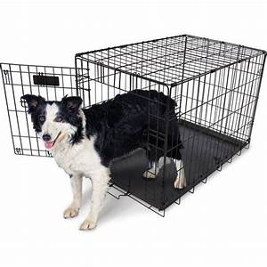 aspen pet 30 in home training wire kennel academy With aspen pet dog kennel