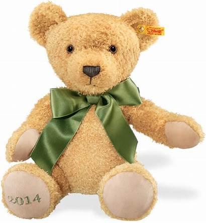Bear Teddy Steiff Bears Cosy Plush Steiffteddybears